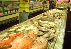 seafoodcity2.jpg