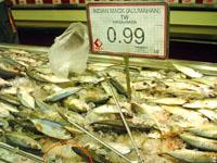 seafoodcity4.jpg